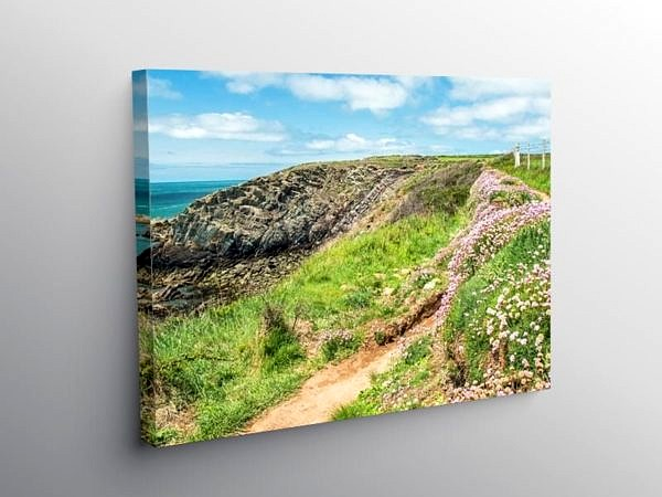 Pembrokeshire Coast Path near St Justinians on Canvas