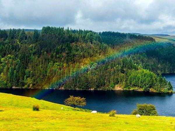 Rainbow over Llyn Brianne Reservoir Mid Wales