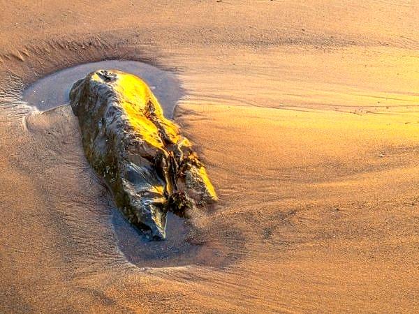 Setting Sun on Rock Llantwit Major Beach Glamorgan Coast