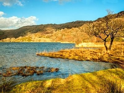The shore of Llyn Gwynant, Snowdonia, in early Spring