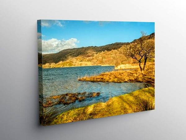 The shore of Llyn Gwynant, Snowdonia, in early Spring on Canvas