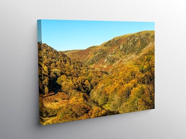 Autumn in the Doethie Valley Mid Wales, Canvas Print