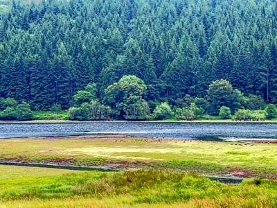 Talybont Reservoir Nature Reserve Brecon Beacons