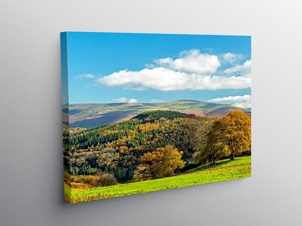The Myarth Hill and Black Mountains Behind, Canvas Print