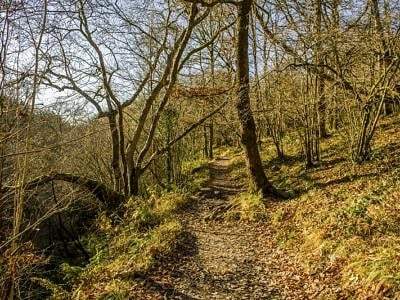 Footpath through the Vale of Neath