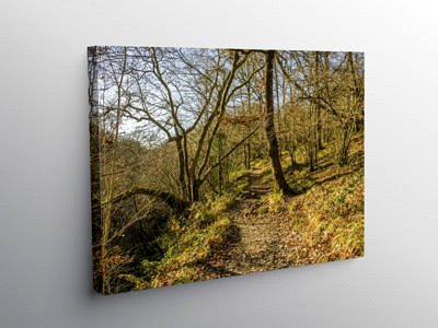 Footpath through the Vale of Neath, Canvas Print