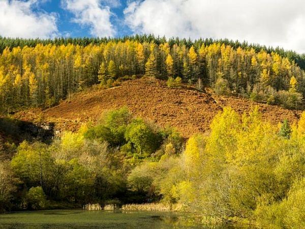 Upper Pond at Clydach Vale Rhondda
