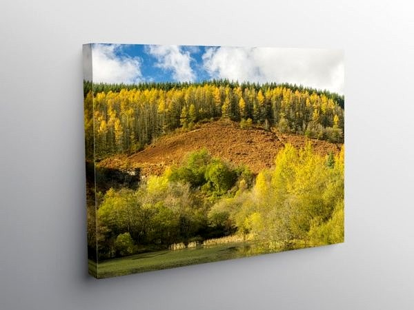 Upper Pond at Clydach Vale Rhondda, Canvas Print