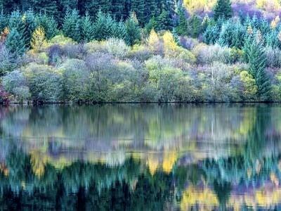 Llwyn Onn Reservoir Reflections_DSC5439