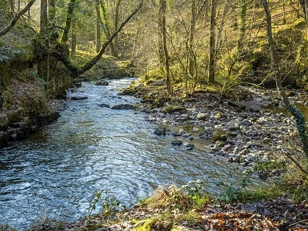 The River Neath in November