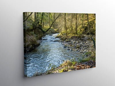 The River Neath in November, Canvas Print