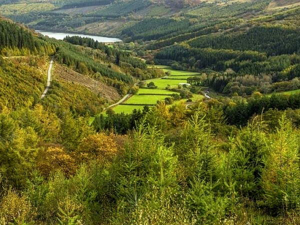The Upper Talybont Valley Brecon Beacons in Autumn