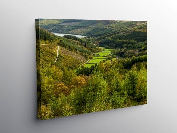 The Upper Talybont Valley Brecon Beacons in Autumn, Canvas Print