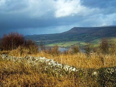 View from Allt yr Esgair to Mynydd Troed