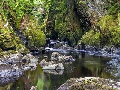Fairy Glen near Betws y Coed CoW_DSC0528