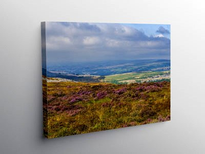View from the Blorenge, Canvas Print