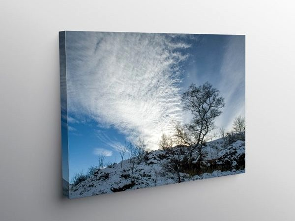 Winter Tree and Sky Brecon Beacons, Canvas Print