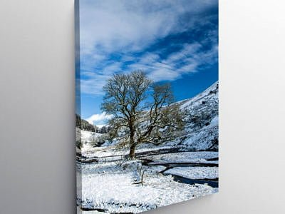The guardian tree at Cwm Crew Brecon Beacons, Canvas Print