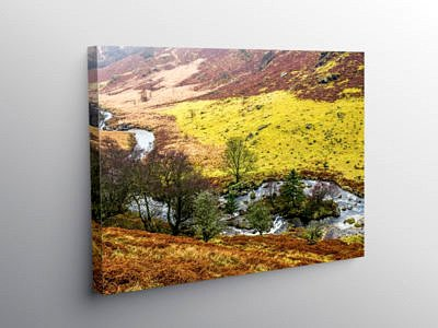 The Abergwesyn Pass in Powys, Canvas Print