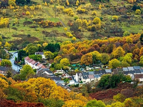 Looking Down on Blaenrhondda Autumn
