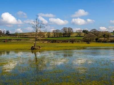 Brechfa Pool near Llyswen Powys