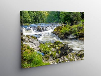 Cenarth Falls on the River Teifi, Canvas Print