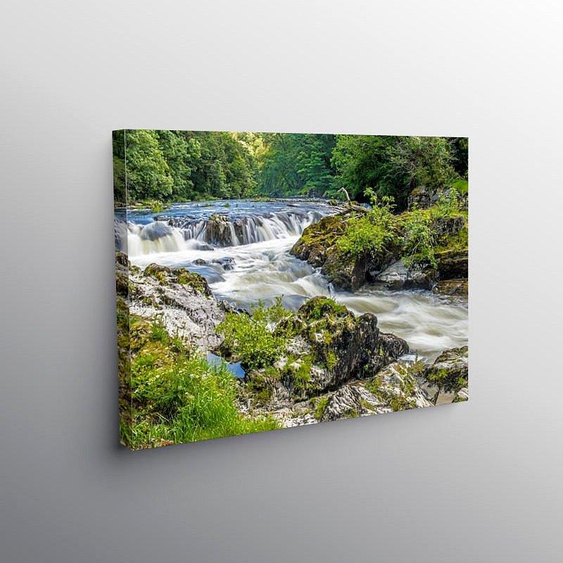 Cenarth Falls on the River Teifi, Canvas Print