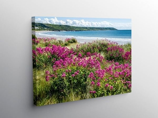 Port Eynon Beach on Gower, Canvas Print