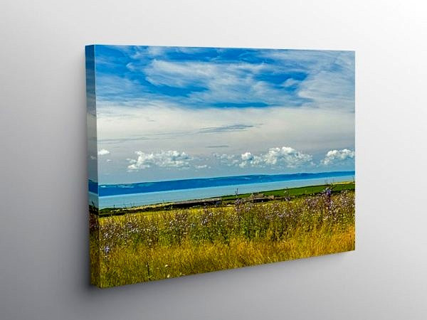 Across the Vale of Glamorgan in Summer, Canvas Print