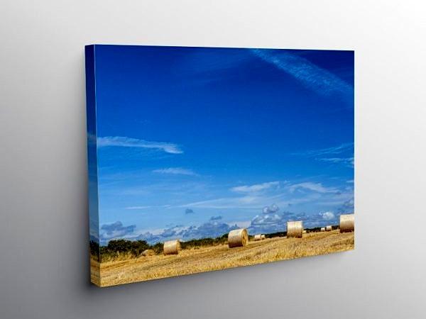 Summer Harvest Vale of Glamorgan, Canvas Print