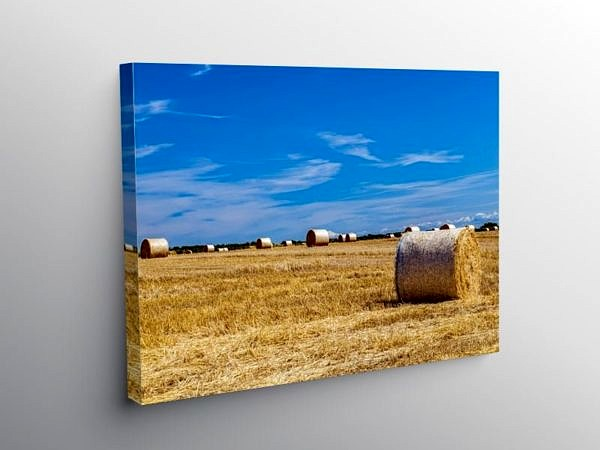 Summer Harvest Vale of Glamorgan, Canvas Print