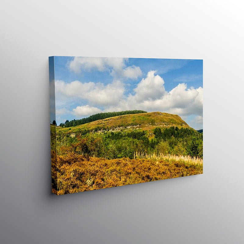 Pen Pych above Blaencwm, Canvas Print
