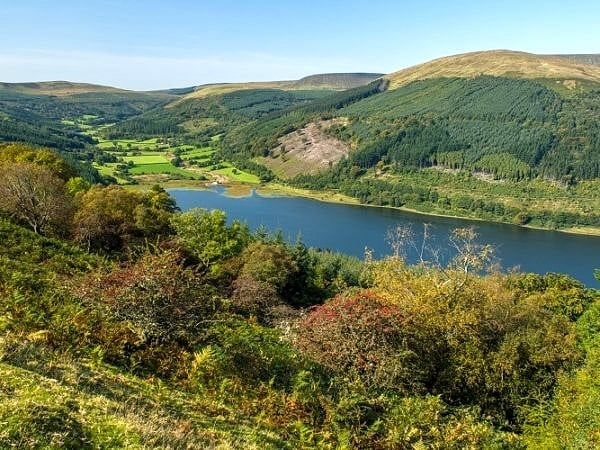 Looking up the Talybont Valley