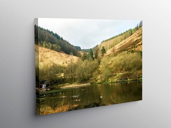 The Upper Pond Clydach Vale, Canvas Print