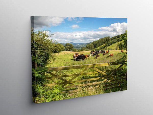 Upland Farming Central Brecon Beacons south Wales, Canvas Print