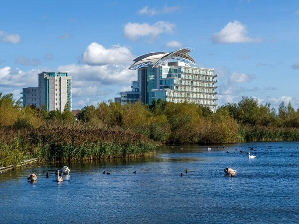 Cardiff Bay Wetlands for wildlife