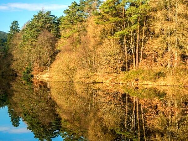 Clydach Reservoir Llanwonno Forest Rhondda Fawr South Wales