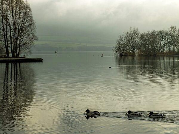 Llangorse Lake Brecon Beacons National Park January