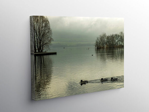 Llangorse Lake Brecon Beacons National Park January, Canvas Print