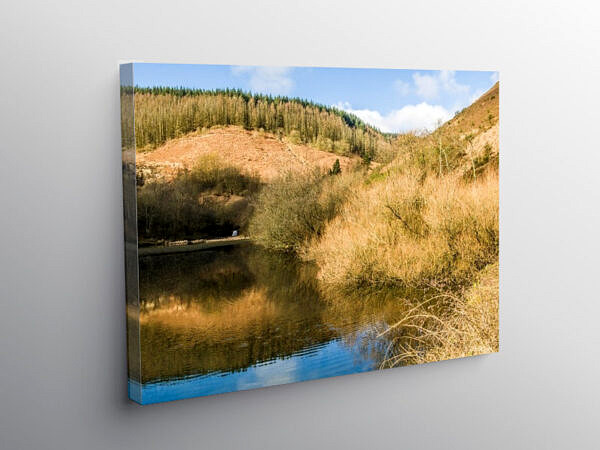 Clydach Pool or Pond at the End of the Clydach Valley, Rhondda, Canvas Print