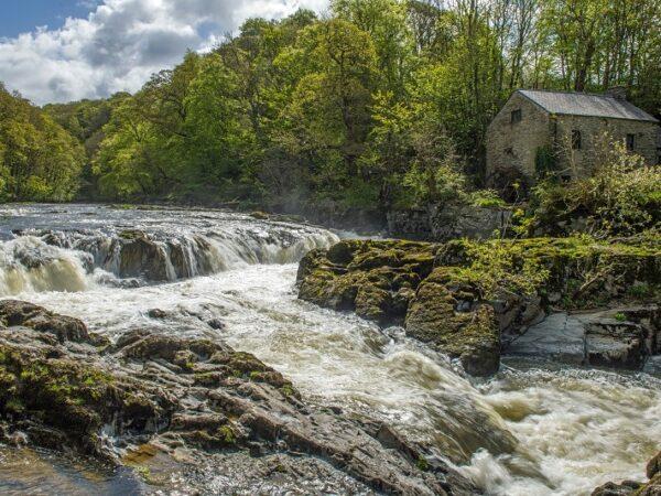 Cenarth Falls Carmarthenshire Pembrokeshire