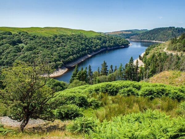 Part of Llyun Brianne Reservoir Carmarthenshire