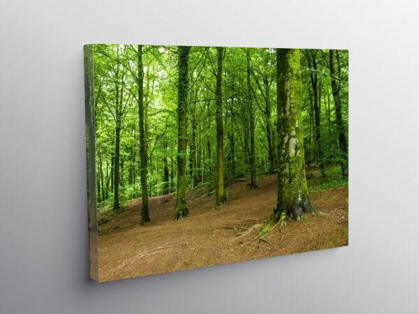 Fforest Fawr near Cardiff South Wales, Canvas Print