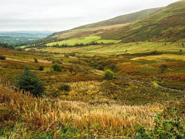 The Tarell Valley Brecon Beacons